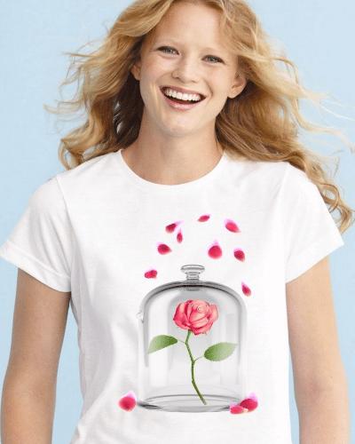 Enchanted Rose Women's T-Shirt