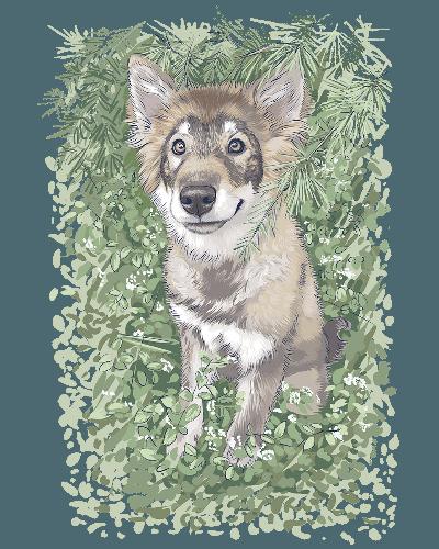 Friendly Wulf