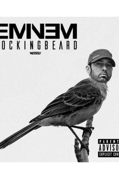 Eminem Mocking Beard by markmarshall