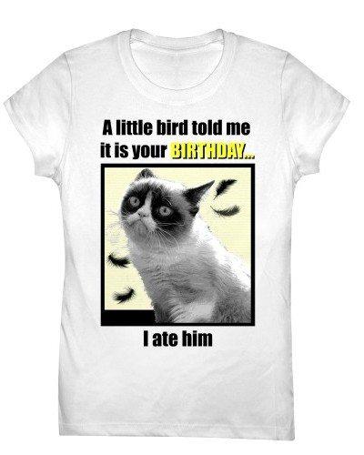 Grumpy Cat – Little Bird