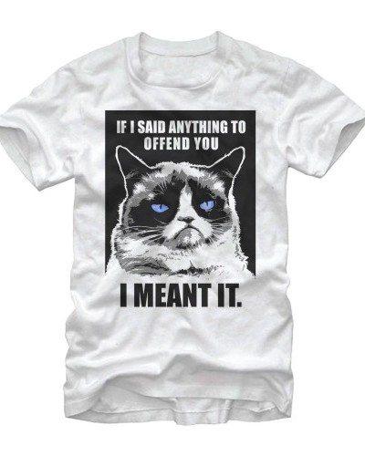 I Mean it! Grumpy Cat