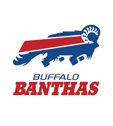 BuffaloBanthas_1024x1024
