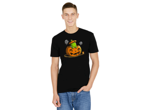 Halloween Turtle | Funny & cute shirts