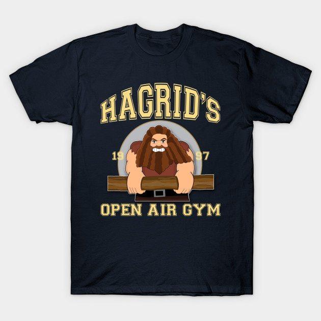 Hagrid's Gym