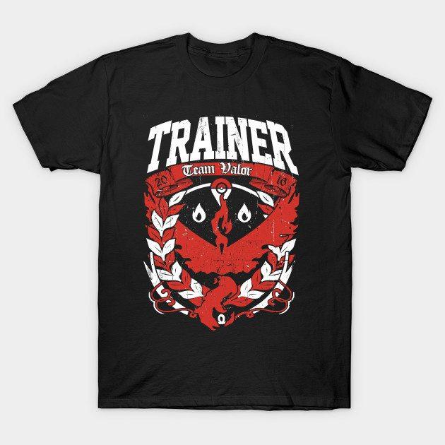 Team VALOR GO T-Shirt