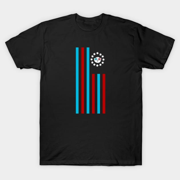 3D Panda – Flag T-Shirt