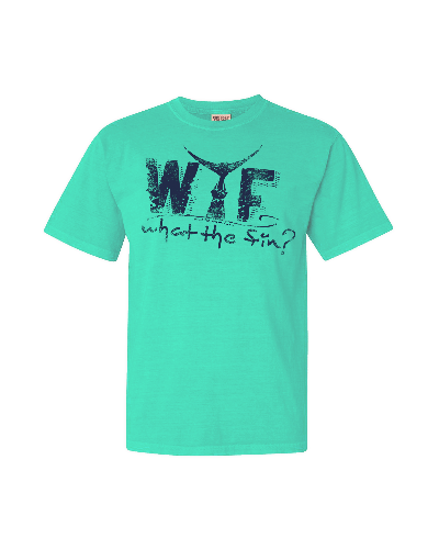 WTF – WHAT THE FIN? The Original Logo