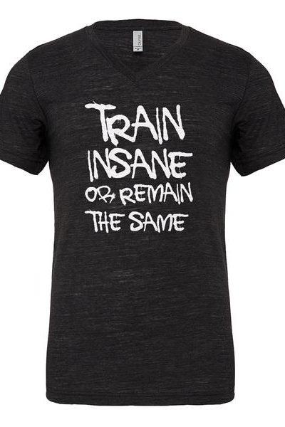 Train Insane or Remain the Same Mens Vneck Short Sleeve T-shirt