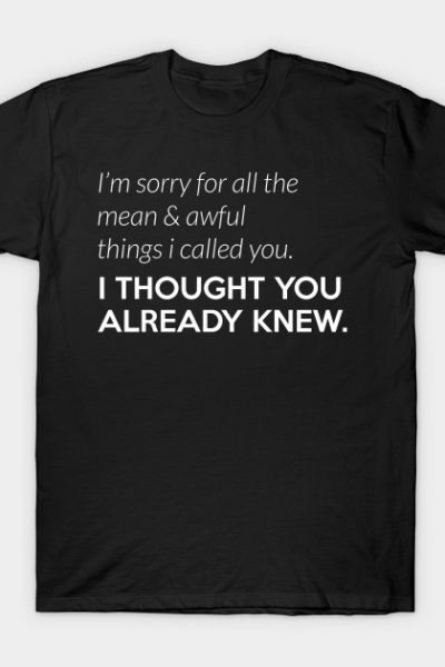 Insult: I'm sorry for all the mean & awful things I called you. T-Shirt