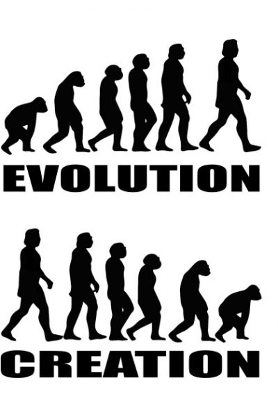 Evolution Creation by oldtee