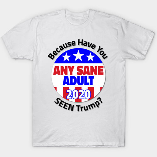 Elect Any Sane adult in 2020 Because Have You Seen Trump? T-Shirt